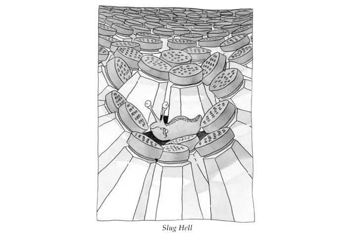 slug-hell