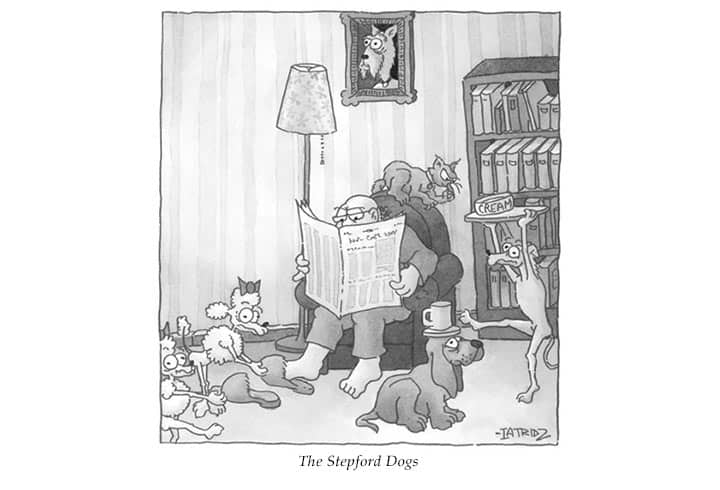 stepford-dogs